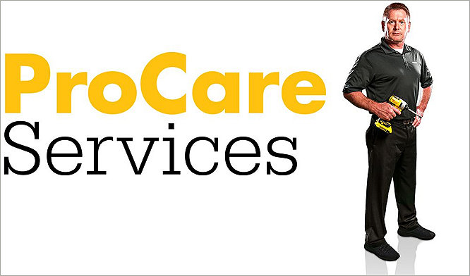 ProCare Services word mark
